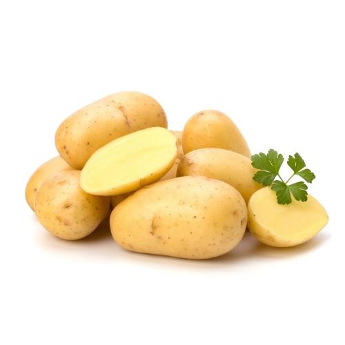 宜昌户外烧烤区—土豆